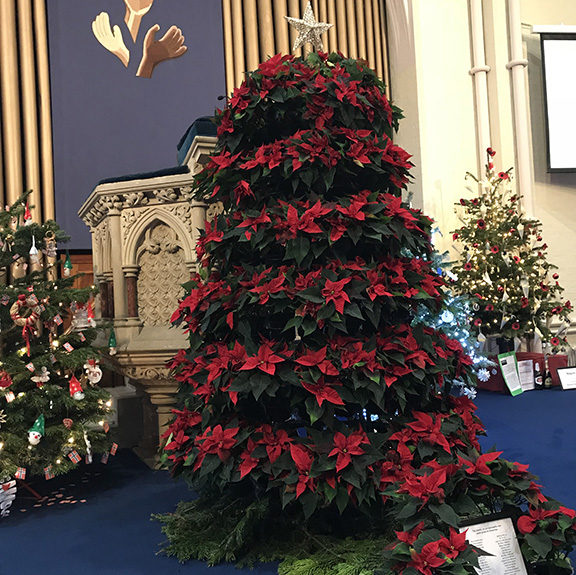 Why Do We Have Christmas Trees For Christmas: Trinity Church Christmas Tree Festival